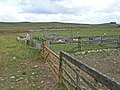 Sheep pens above Bellingham - geograph.org.uk - 213630.jpg