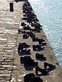 Shoes on the Danube Promenade, Budapest.JPG