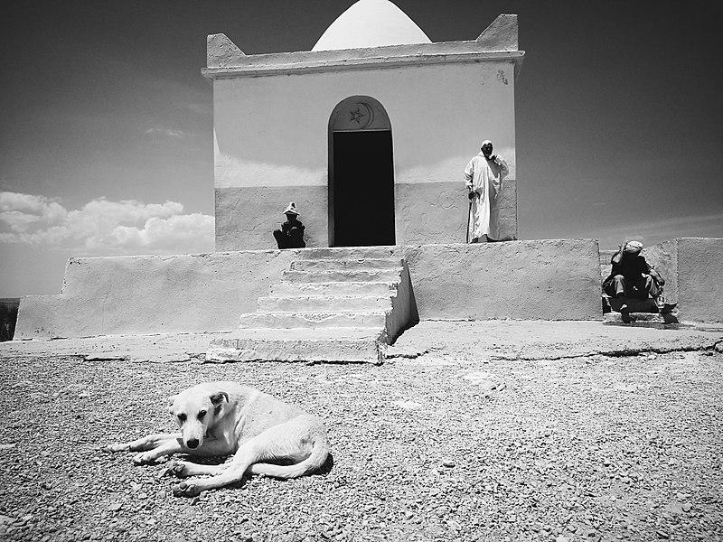 File:Sidi Mansour.jpg