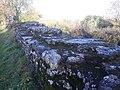 Silchester Roman city walls 04.jpg