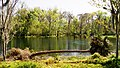 Silver Springs 6 - panoramio.jpg