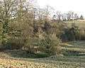 Site of old pond at South Cowton - geograph.org.uk - 1104803.jpg