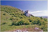 Skály na úbočí Stolové hory v PR Růžový vrch.JPG