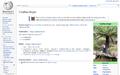 Skärmbild av Cyathea dregei från 2014-06-26 10-39-25.png