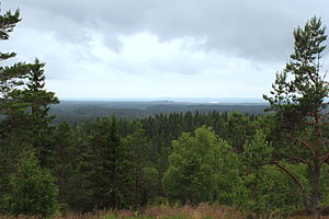 South Swedish highlands - The forested landscape of the South Swedish highland  seen from Skuruhatt in Eksjö Municipality.