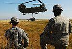 Slinging supplies on the battlefield DVIDS336031.jpg