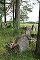 Smėlynės senosios žydų kapinės - panoramio - Darius Smalskys (1).jpg