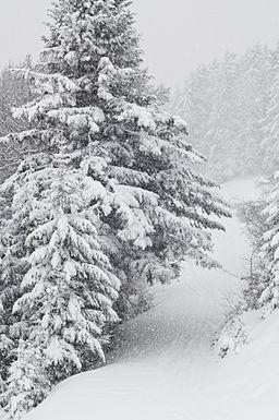 Snowstorm in Tyrol - 02
