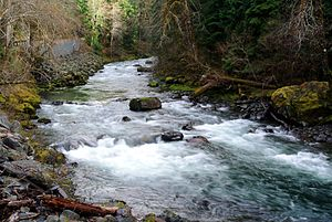 Clallam County, Washington - Sol Duc River