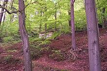 Märchenwald Ittertal