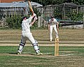 Southwater CC v. Chichester Priory Park CC at Southwater, West Sussex, England 013.jpg
