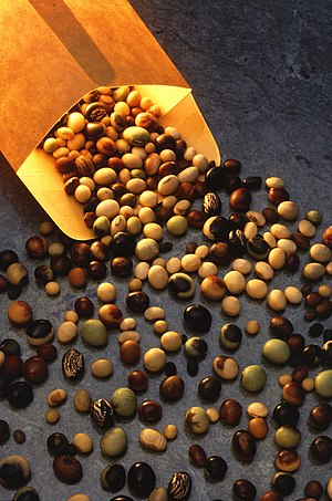 Soybean - Varieties of soybeans are used for many purposes.