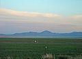 Spring in Utah 2009 Fish Springs Wildlife Refuge.jpg