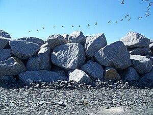 St Joseph Peninsula FL rock wall01