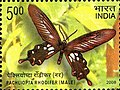Stamp of India - 2008 - Colnect 157950 - Andaman Clubtail Pachliopta rhodifer - Male.jpeg