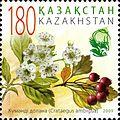 Stamps of Kazakhstan, 2009-24.jpg
