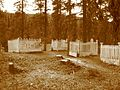 Stanley Cemetery.jpeg