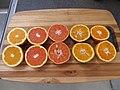 Starr-180917-5496-Citrus sinensis-several varieties ready for juicing Washington Navel Cara Cara Navel Vaniglia sanguinea Temple Tangor Minneolo Tangelo-Hawea Pl Olinda-Maui (45766405522).jpg