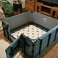Steel Frame Whelping Box with Washable Liner.jpg
