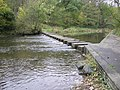 Stepping stones, Humford Mill - geograph.org.uk - 273687.jpg