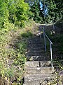 Steps, Water Ditchampton - geograph.org.uk - 948504.jpg