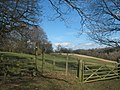 Stile and gate on the Wealdway - geograph.org.uk - 1735481.jpg