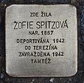 Stolperstein für Zofie Spitzova.JPG