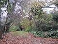 Stoneyfields Park wood.JPG