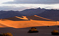 Stovepipe Wells - Dunes at Sunrise (3811734775).jpg