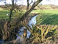 Stream near the A5104 - geograph.org.uk - 352608.jpg