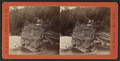 Sugar Loaf Park, near Third Falls, Genesee River, by E. & H.T. Anthony (Firm) 2.png