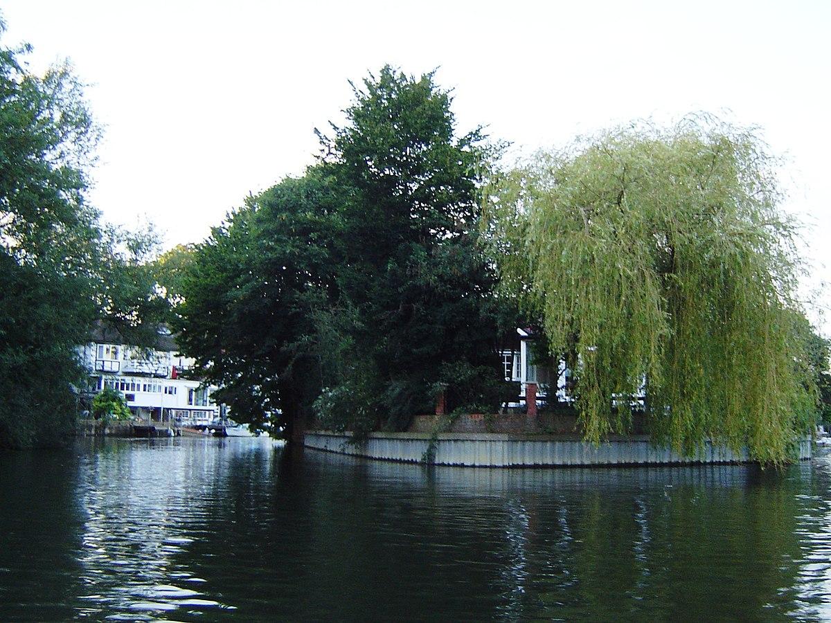 River Island F