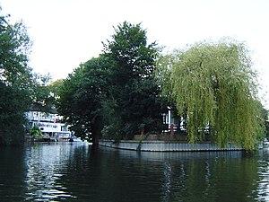 Sunbury Court Island - End of Sunbury Court Island from upstream