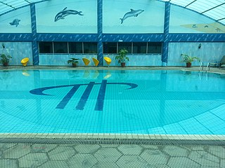 Swimming pool nairobi.jpg