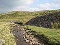 Swinhope Burn (3) - geograph.org.uk - 1057979.jpg