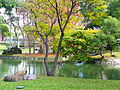 Taipei Guest House Garden Pond East with Black Swans 20100101.jpg