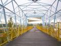 Tanyasheng bikeway bridge.jpg