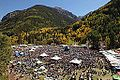 Telluride Blues & Brews Festival.jpg