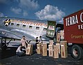 Terra Ceia Island Farms gladiolus being loaded onto a U.S. Airlines plane at the Sarasota Airport.jpg