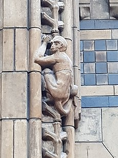 Terracotta monkey