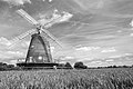 Thaxted Windmill - geograph.org.uk - 867153.jpg