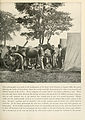 The Photographic History of The Civil War Volume 04 Page 051.jpg