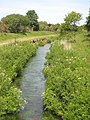 The River Hayle at Tremelling - geograph.org.uk - 1331268.jpg