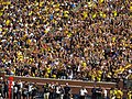 The Wave, Michigan Stadium, University of Michigan, Ann Arbor, Michigan (21125487583).jpg