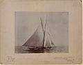 The Yacht Shamrock (HS85-10-10879).jpg