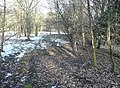 The former line of Blake Law Lane, Clifton - geograph.org.uk - 1157267.jpg