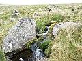 The tumbling Afon Ffrydlas - geograph.org.uk - 430861.jpg