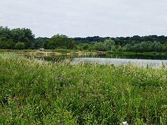 Thorpe Marshes - Image: Thorpe Marshes 7