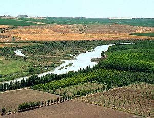 none  About 100 km from its source, the Tigris enables rich agriculture outside Diyarbakır, Turkey.