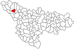 Location of Tomnatic in Timiș County